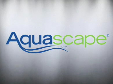 Aquascape Video